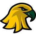 brockport golden eagles logo